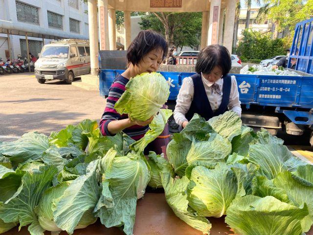 109年度推動農產品甘藍產銷調節促銷活動