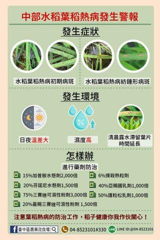 中部水稻葉稻熱病發生警報